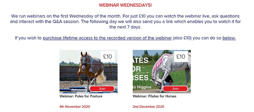 Educational horse anatomy webinars with Gillian Higgins