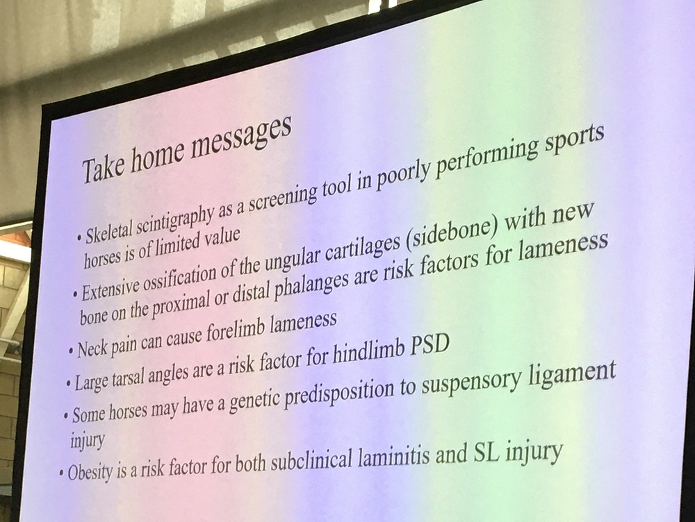 What's is new in equine lameness diagnosis Dr Sue dyson