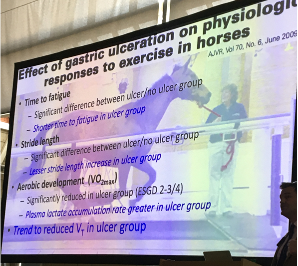 Equine Gastric Ulcer Syndrome effect on exercise