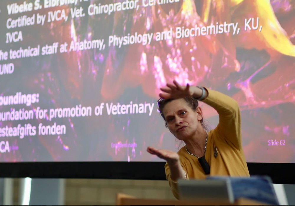 Profound Visceral Myofascial Connections in the Horse. DR VIBEKE ELBRØND