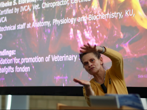 HORSES INSIDE OUT CONFERENCE 2020 - ANATOMY IN ACTION - PART 3