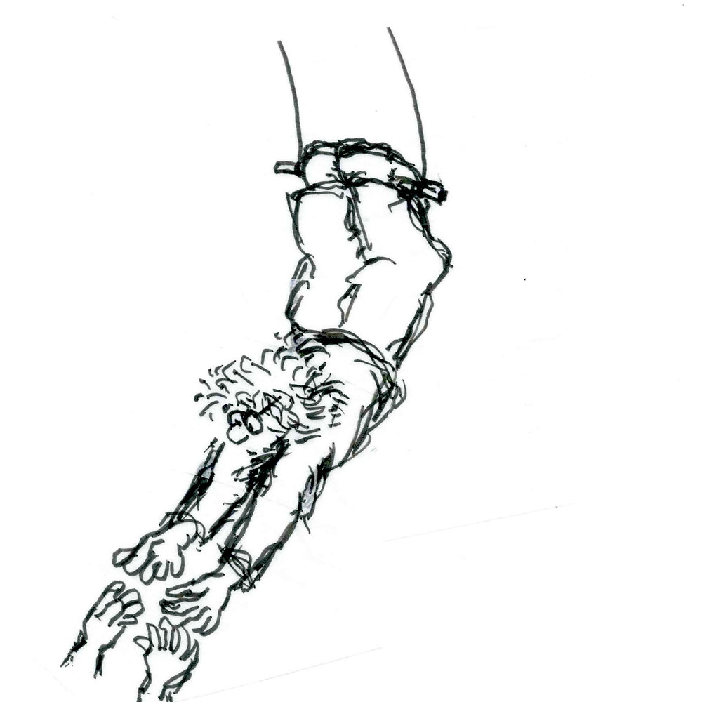 Cartoon sketch of a trapeze artist hanging by their knees and reaching for a pair of hands coming up from the bottom left of the illustration. Cartoon by Earle Levenstein.