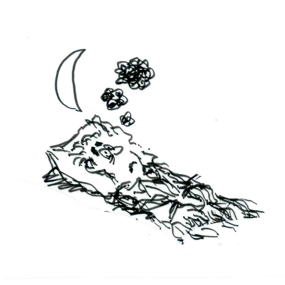 Cartoon sketch of a man lying awake in his bed with his eyes wide open and black thought-clouds hovering overhead. A crescent moon rises in the background to the left. Illustration by Earle Levenstein.