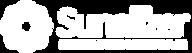 logoSunalizerWhiteBr.png