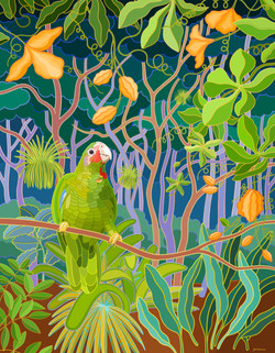 Parrot on the Trail