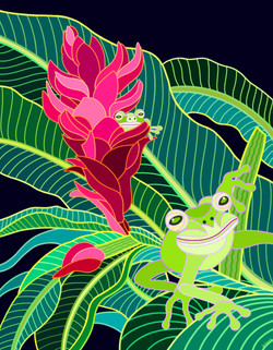 Tree Frogs & Ginger