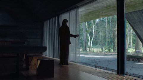 film: WALD