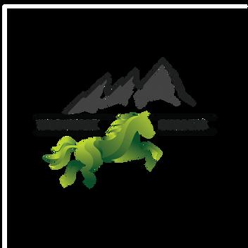 Wild Horse Builders Daniel James Media