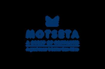 Motseta Design - Final Daniel James Media