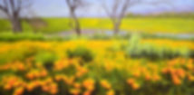 DSC_0045_edited.jpg