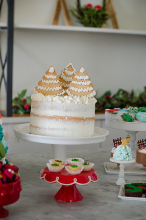 10.12.17 MINT Holiday Session-0062.jpg
