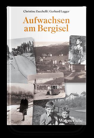 bergisel.png