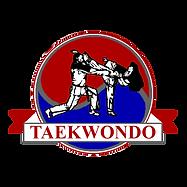Taekwondo Badge