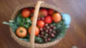 Basket of Veg.jpg