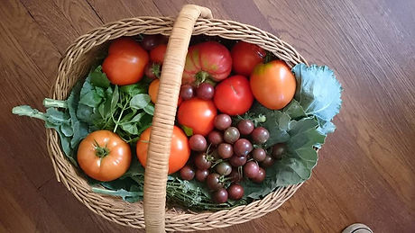 Basket of Veg.jpg