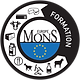 LOGO MONS FORMATION EUROPE.png