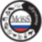 LOGO MONS FORMATION RUSSIE.png