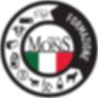 LOGO MONS FORMATION ITALIA (3).jpg