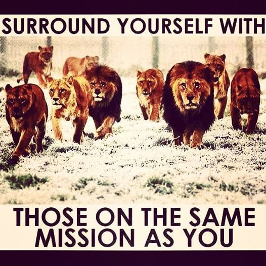 Lions on a mission.jpg
