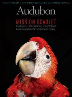 Cover - Audubon Spring 2017