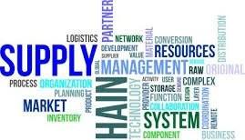 A Importância Do Executivo De Supply Chain Nas Organizações
