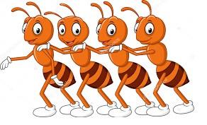Comprador formiga? ahhh não....