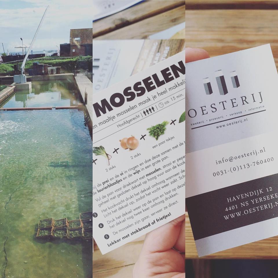 Oesterij, the oyster farm/restaurant!