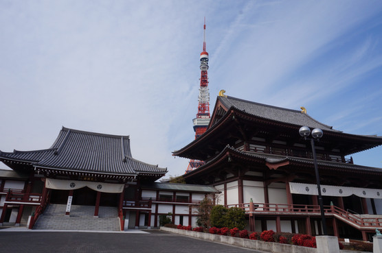 Temples and the Tokyo Tower