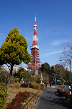 Tokyo Tower from afar