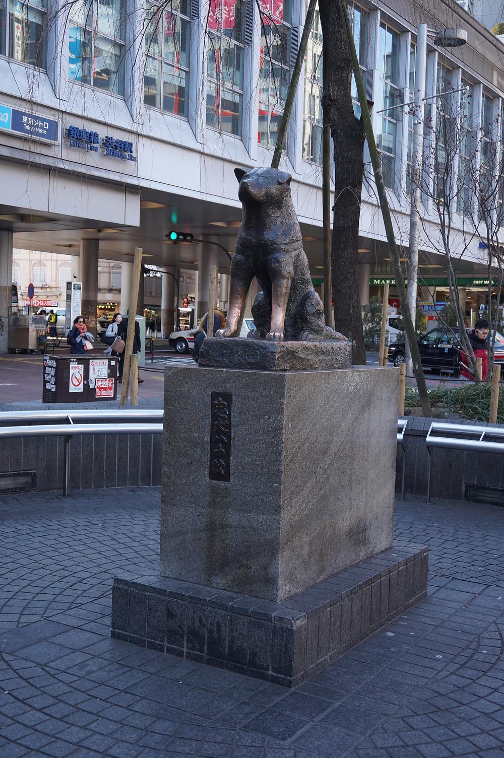 Hachiko Statue - Ordinary Brussels