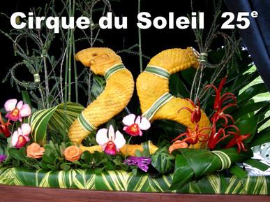 25 Cirque Soleil.jpg
