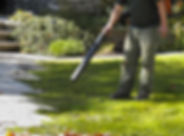 fall-spring-lawn-cleanup-scituate-ma.jpg