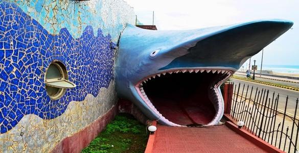 Matsyadarshini Aquarium.jpg