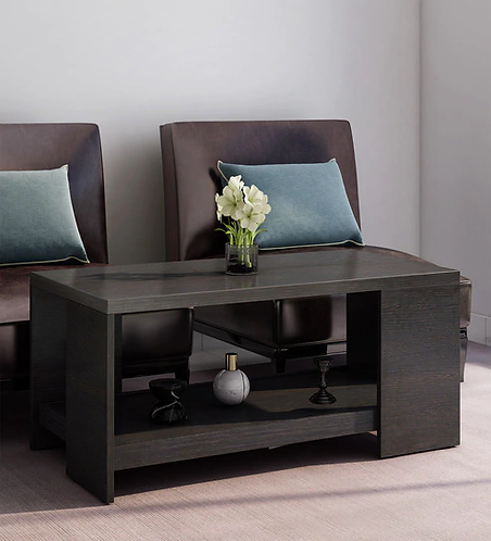 Dsil Coffee Table in Wenge Colour