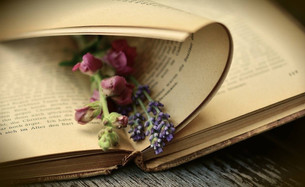 Мы пишемисторию своей жизни, а, как известно, ни одна хорошая история не обходится без героя или г
