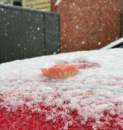 SNOW DENTURE.jpg