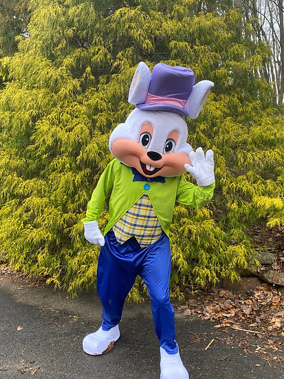 Easter Bunny Mini Visits - Sunday April 4th.