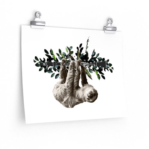 Clever Sloth & Clarinet Posters