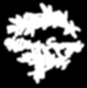 Histoires Sauvages, fleuriste mariage, fleurs mariages, fleuriste événementiel, fleur sauvages et naturelles, design floral, création florales sauvages, fleurs sauvages, mariage reims, fleuriste mariage reims, fleuristemarage marne, fleuriste mariage ardennes