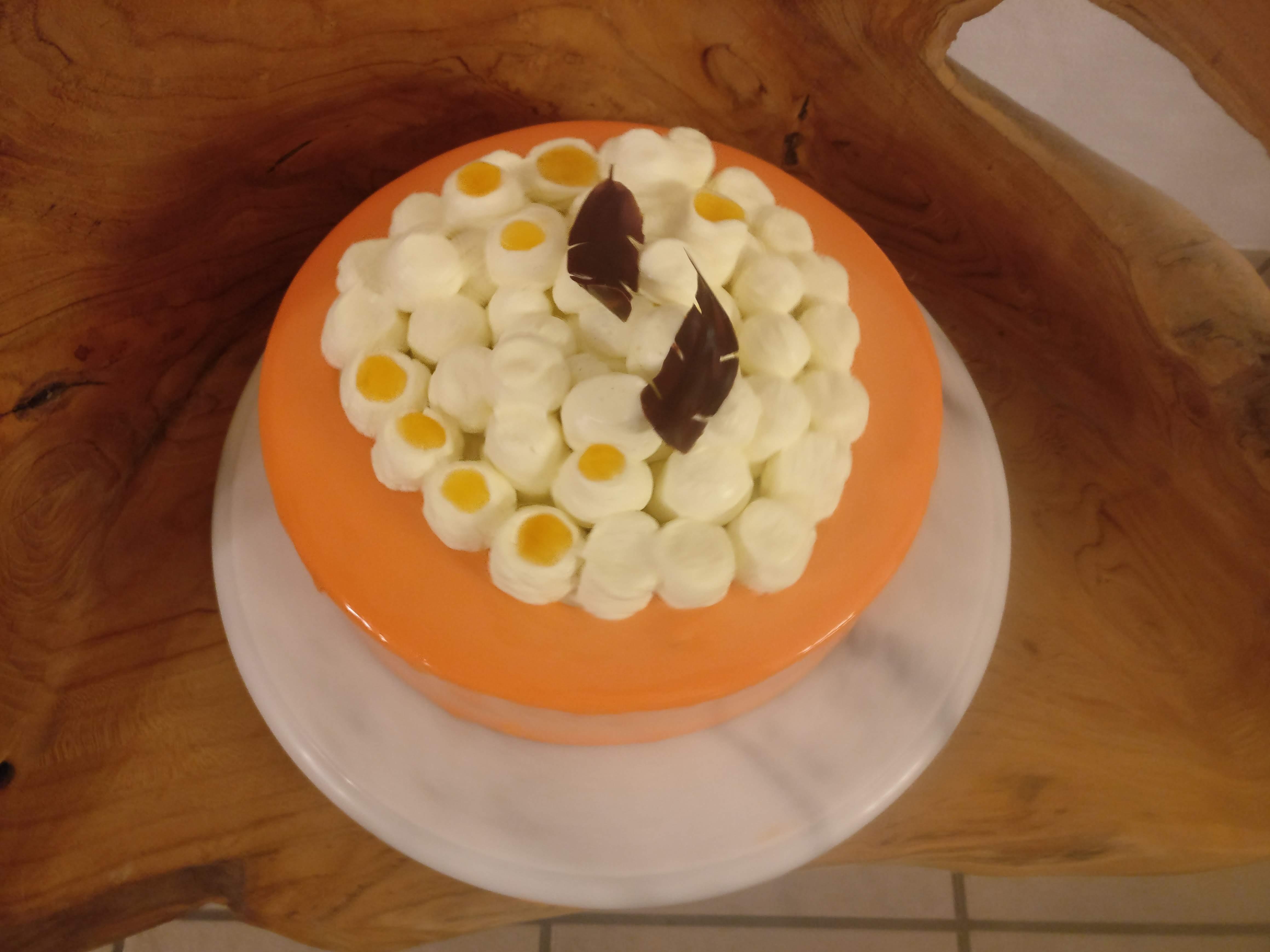 Aprikosenmousse Torte