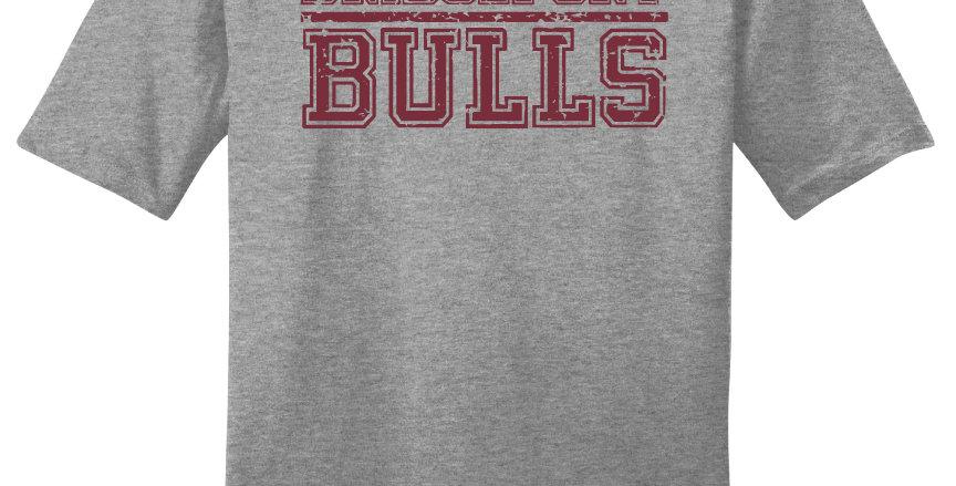 Bridgeport Bulls Block Print