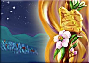 PARACHAH (Parole de la semaine): QORAH