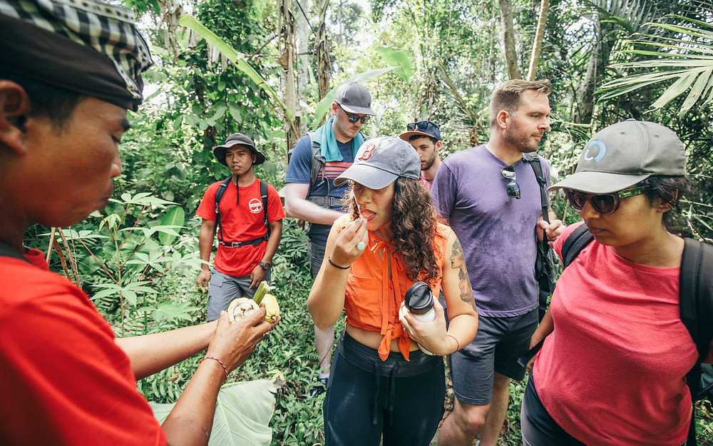 A group of people walk through a jungle, with one person trying a piece of food from their tour leader.