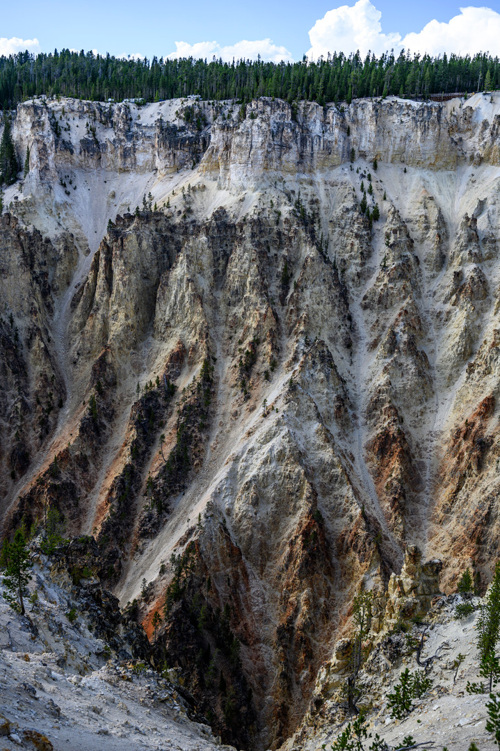 Grand Canyon of the Yellowstone in Yellowstone National Park, Wyoming