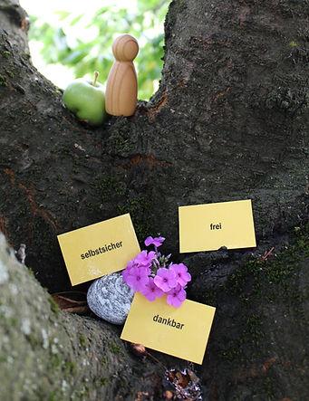 Kinesiologie komplementär Therapie Bucheggberg Bern Biel Solothurn