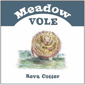 Meadow Vole by Reva Cotter