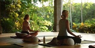 larry-il-ayurvedic-meditation-class.jpg