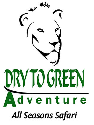 Dry to Green Advetures Safaris in Tanzania
