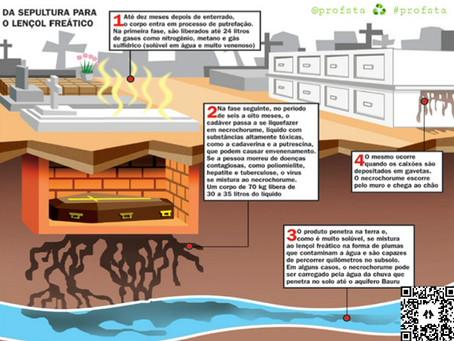 Pandemia e o Perigo dos Cemitérios