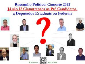 Rascunho Político: Já são 12 os Pré Candidatos a Deputados de Cianorte